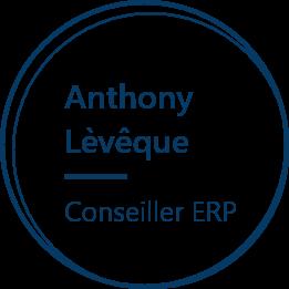 Agelios, Anthony Lèvêque, Conseiller ERP